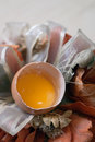 Broken egg and still life Royalty Free Stock Photo