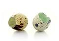 Broken eggshell Royalty Free Stock Images