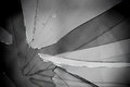 Broken glass grayscale sharp hole cracks splinters by the street background Stock Photo