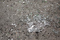 Broken glass on the ground texture Royalty Free Stock Images