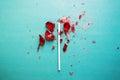 Broken heart lollipop Royalty Free Stock Photo