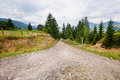Broken rural road deep in the mountains in forest green Royalty Free Stock Images