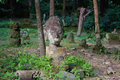 Broken statues of Buddha in a forest temple Royalty Free Stock Photo