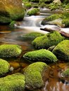 Broken trunk on blocked at stream bank above bright blurred waves. Big mossy boulders in clear water of mountain river. Royalty Free Stock Photo