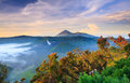 Bromo vocalno at sunrise east java indonesia active Stock Photography