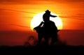 Bronc rider Royalty Free Stock Photo