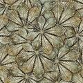 Bronze chestnut leafs seamless background. Stock Photos