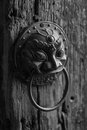 Bronze chinese door handle a traditional in metal in tradition it will suppress monsters and ghosts Royalty Free Stock Photos