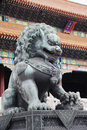 Bronze lion statue in the forbidden city Stock Images