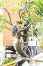 Bronze statuette of couple mermaid in pattaya thailand Stock Photos