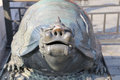 A bronze turtle statue in the forbidden city beijing china Royalty Free Stock Photography