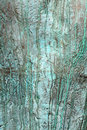 Bronze verdigris background Royalty Free Stock Images