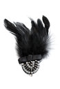Brooch with feathers fashionable decorated and stones isolate on white Stock Images