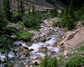 Brook in mountains Stock Photography