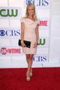 Brooke anderson at the cbs showtime and cw party tca summer tour party beverly hilton beverly hills ca Stock Photography