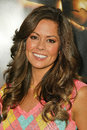 Brooke burke at the world premiere of warner bros batman begins chinese theater hollywood ca Stock Photo