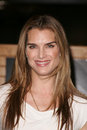 Brooke shields at an in store appearance to sign copies of her book down came the rain borders books torrance ca Royalty Free Stock Photography