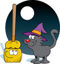 Broom and Cat Stock Photography