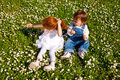 Brother and sister little sitting on the grass pulling sisters hair Royalty Free Stock Photo