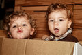 Brothers little curly boys in a paper box Stock Photos