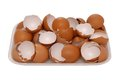 Brown egg shell Royalty Free Stock Photo