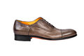 Browm male shoe-2 Stock Image