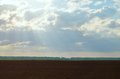 Brown agriculture field and blue sky with clouds Stock Photos