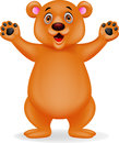 Brown bear cartoon Stock Images