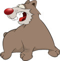 Brown bear cartoon malicious with the big red nose Royalty Free Stock Images