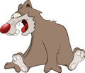 Brown bear cartoon malicious with the big red nose Royalty Free Stock Image