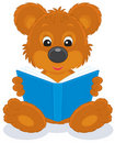 Brown bear cub reading a book Stock Photography