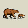 Brown bear and cub vector illustration Stock Photo