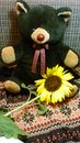 Brown bear doll with sunflower Royalty Free Stock Photo