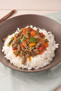 A brown bowl of white rice with stir fry beef with Royalty Free Stock Photo