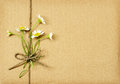 Brown cardboard package tied with daisy flowers bouquet Royalty Free Stock Photo