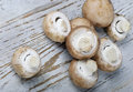 Brown champignon Royalty Free Stock Images
