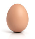 Brown chicken egg on white Royalty Free Stock Photo