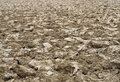 Brown clods of arable field Stock Images