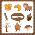 Brown color learn the things that are Royalty Free Stock Photography