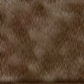 Brown dog fur texture Stock Image