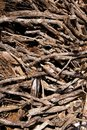 Brown Dried Stacked Firewood P...