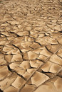 Brown dryness and arid ground a close up of Royalty Free Stock Image