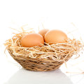 Brown eggs in the basket on white Royalty Free Stock Images