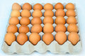 The brown eggs in egg box on white background Royalty Free Stock Photo
