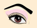 Brown eye close up illustration Stock Image