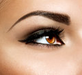 Brown eye makeup eyes make up Stock Images