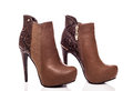 Brown female high heeled boots leather Stock Photos