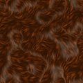 Brown fur Royalty Free Stock Images