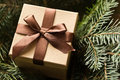 Brown giftbox surrounded by fir twigs Stock Photography