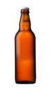 Brown glass beer bottle on white Royalty Free Stock Photos